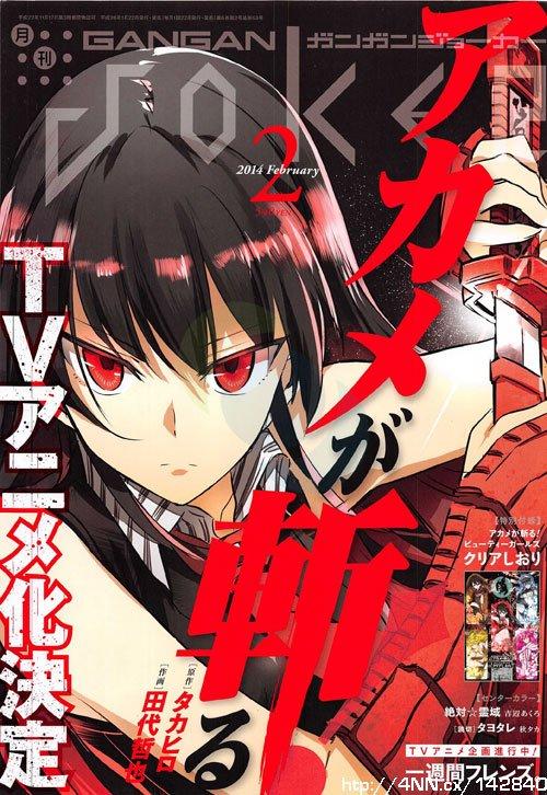 Akame Ga KILL anime cover