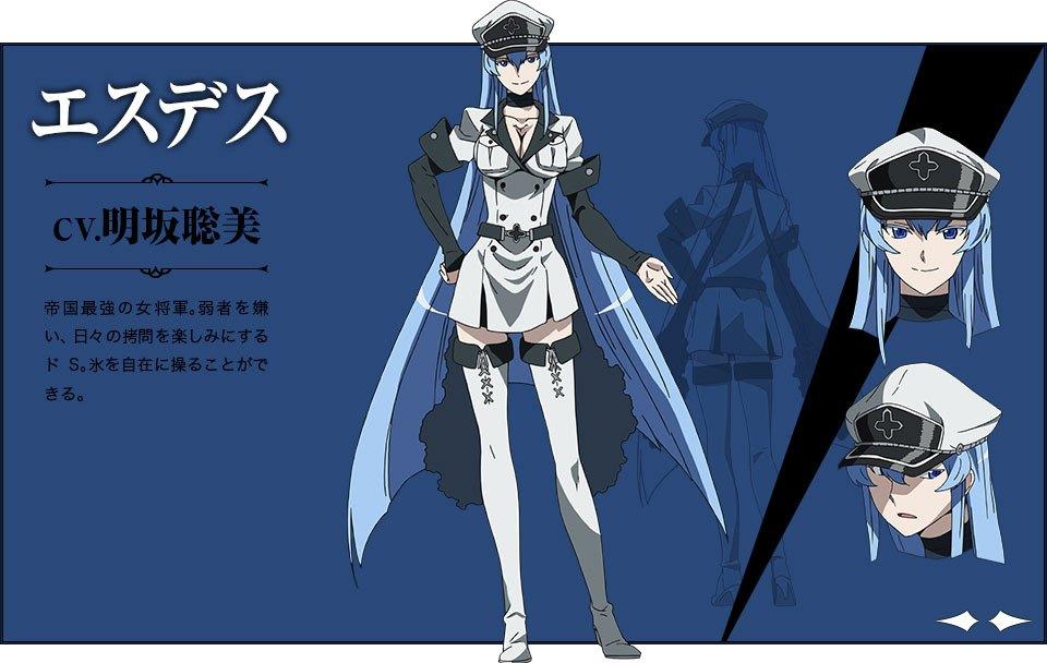 Akame-ga-KILL-Character-Designs-Esdese