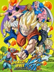 AniFavs Spring 2014 Anime Rankings-Rankings---DBKai