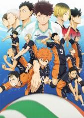 AniFavs Spring 2014 Anime Rankings-Rankings---Haikyuu