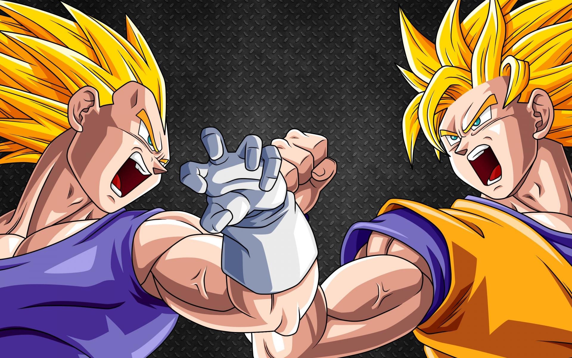 Goku and Vegeta_Haruhichan.com_