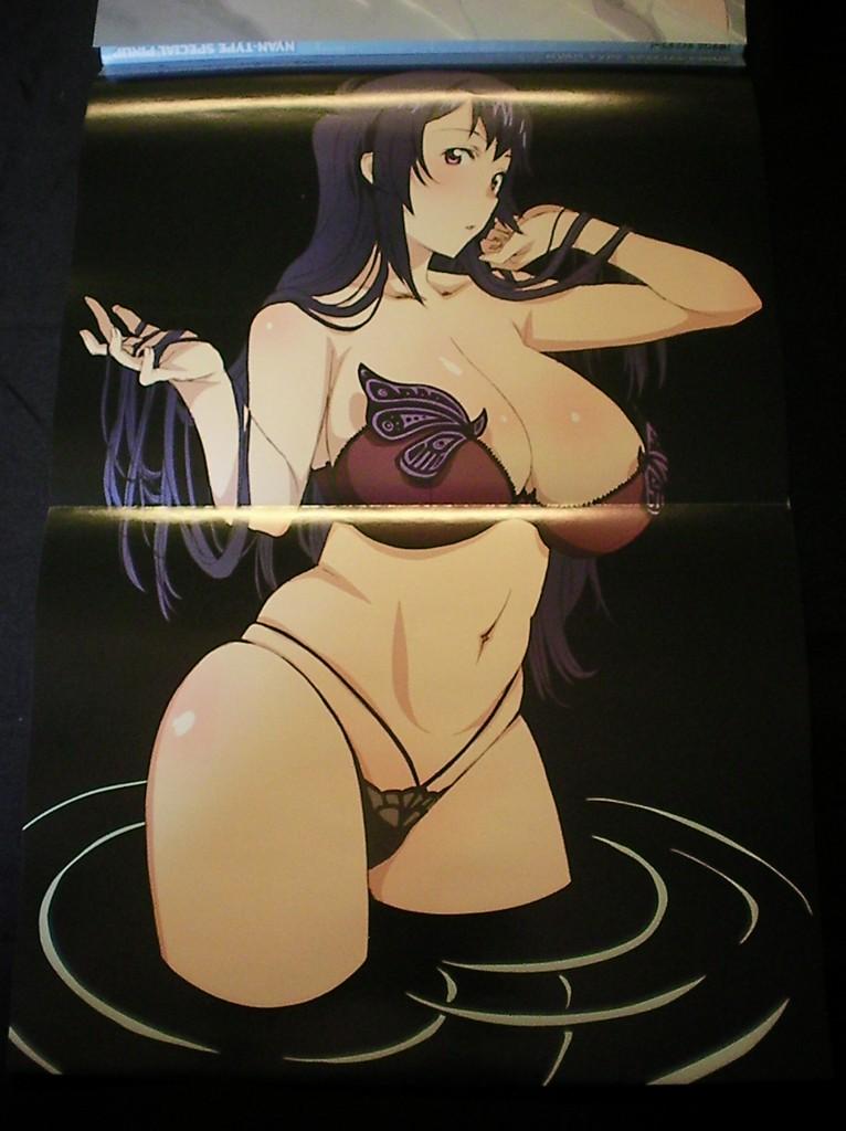 Haruhichan.com NyanType April 2014 posters maken-ki! nijou aki