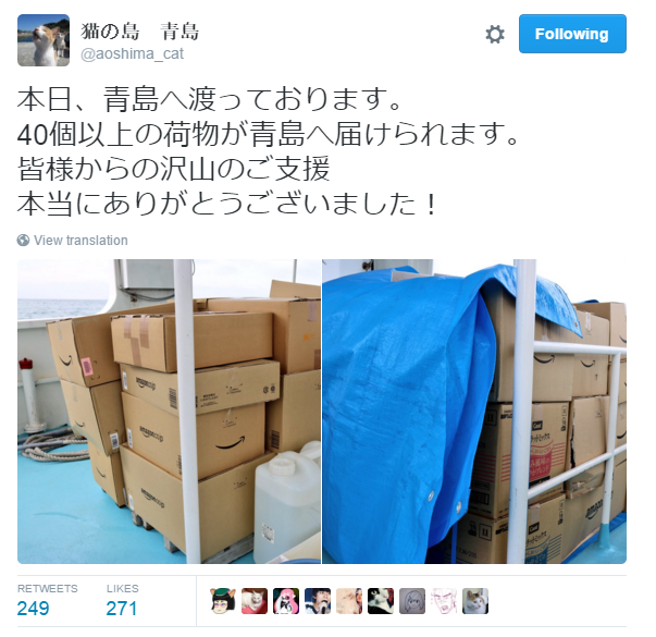 Japan's Cat Island Asks For Food And The Response Is Amazing 5
