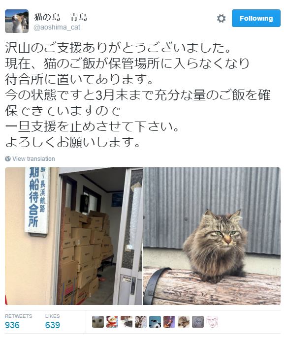 Japan's Cat Island Asks For Food And The Response Is Amazing 6