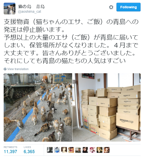Japan's Cat Island Asks For Food And The Response Is Amazing 7