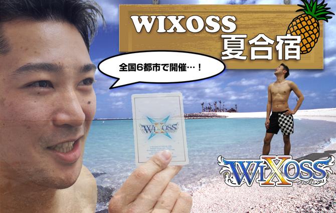 Selector_Infected_Wixoss_Haruhichan.com_Summer_Camp